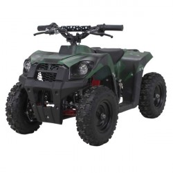 1000 Watt Tiger Mini ATV
