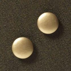 2 ekstra stÆrke magneter (guld)
