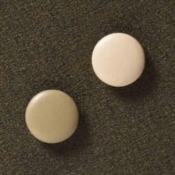 2 ekstra stÆrke magneter (rosa)
