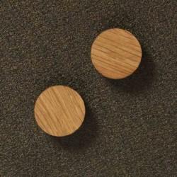 2 ekstra stÆrke magneter (teak)