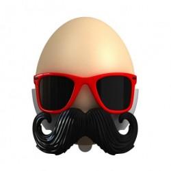 ÆggebÆger (bad egg)