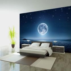 ARTGEIST - Fototapet af hvidt måneskin over vandet - Flere størrelser 150x105