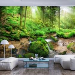 ARTGEIST Fototapet - Humid Forest, idyllisk skov (flere størrelse) 150x105