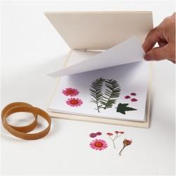 Blomsterpresser i krydsfiner med papir.