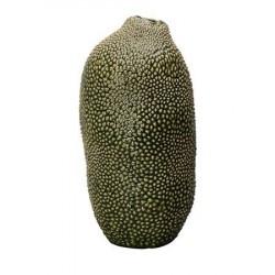 By On Vase, Caulerpa, Grøn, h: 36 cm