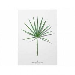 Hagedornhagen Plakat Folium 40 x 30 cm