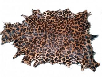 HOUSE OF SANDER Gedeskind - leopard print