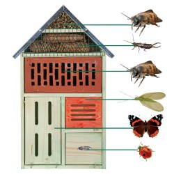 Insekthotel - Dorte