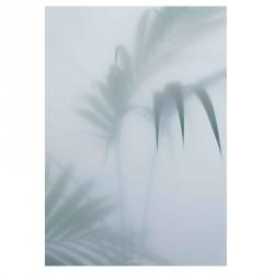 Kristina Dam Palm I Plakat