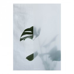 Kristina Dam Split-Leaf I Plakat