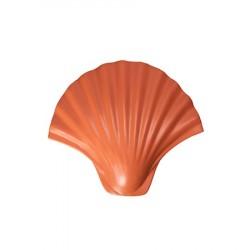 Krog, Skal, Orange