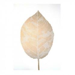 Monika Petersen Leaf White Plakat