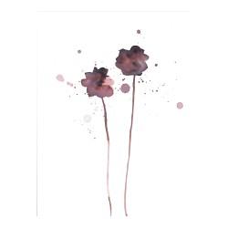Plakat (blomster)