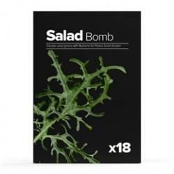 Plantui Salat Bomb