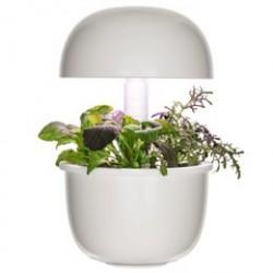 Plantui Smart Garden 3 - Hvid