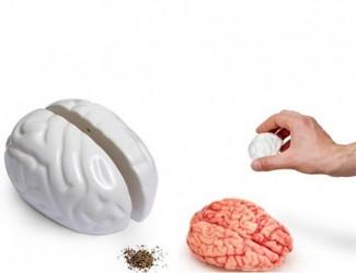 Salt & peber sÆt (brain)