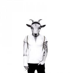 Sanna wieslander hipster goat (50x70)