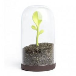 Sprout opbevaringsdÅse