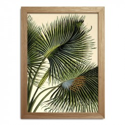 The Dybdahl Co. Plants Mini Print #RC020