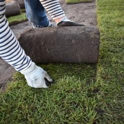 Turfline rullegræs - 432 m²