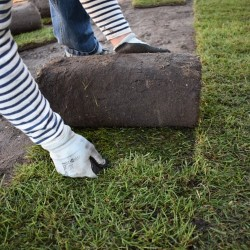 Turfline rullegræs - 480 m²