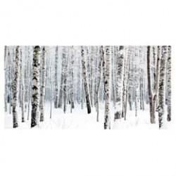 Winter Birch lærredstryk - PhotoInc