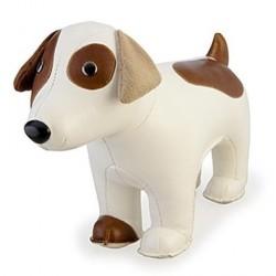 Zuny russell terrier